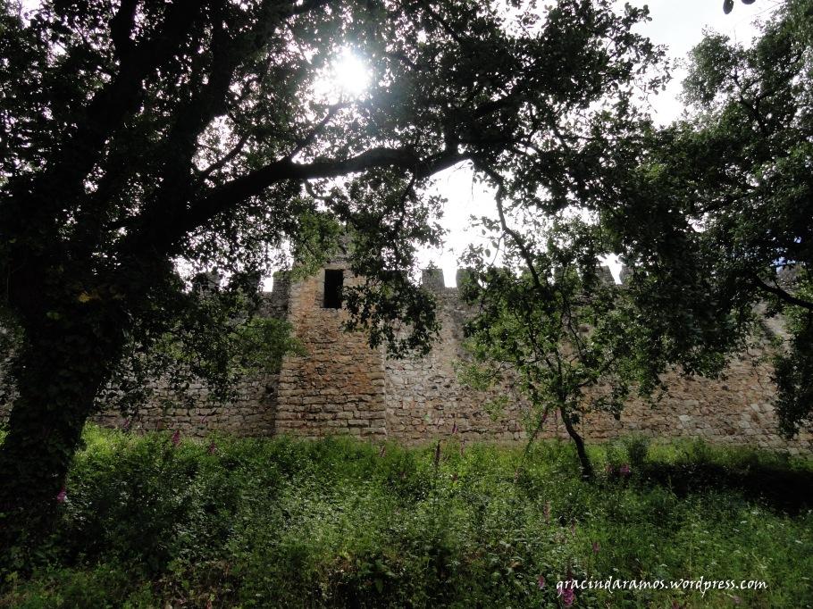 passeando - Passeando até aos Correias... ou o passeio dos 4 castelos! Dsc00920