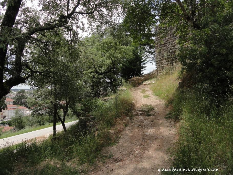 passeando - Passeando até aos Correias... ou o passeio dos 4 castelos! Dsc00930